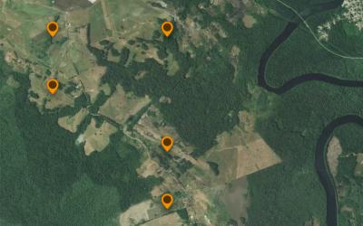 Observatoire des attaques de félins sur troupeau